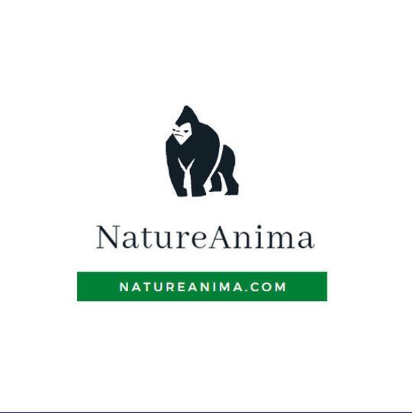 Picture of natureanima.com